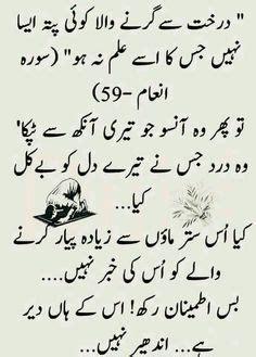 Essay Youm E Azadi In Urdu With Poetry